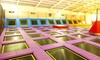 Two-Hour Trampoline Park Access