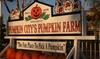 44% Off Attractions at Pumpkin City's Pumpkin Farm