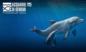 Biglietti Acquario di Genova: Acquario di Genova: ingresso all'Acquario, alla Biosfera e al Bigo panoramico (sconto 29%)
