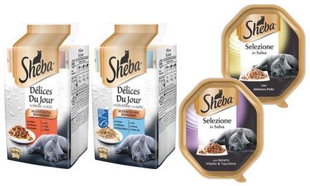 Fino a 44 confezioni di Sheba Selezione in Salsa e Délices Du Jour in Salsa per gatti
