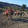 Up to 50% Off at Megan Mahoney Riding Academy