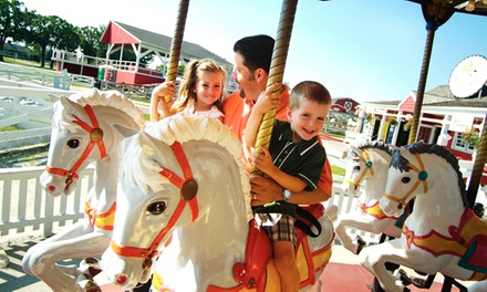 $9 Towards $20 Towards Farmyard and Attractions Experience at Lambs Farm