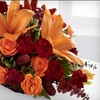 55% Off at House of Flowers