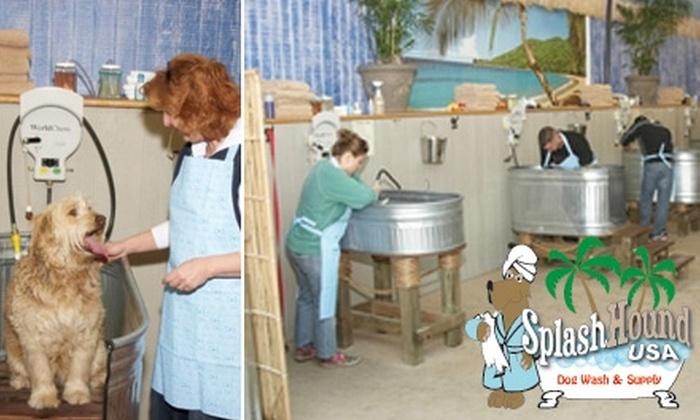 SplashHound USA - Downtown West Sacramento: $6 for Self-Serve Dog Wash & Grooming at SplashHound USA (Up to $15 Value)