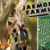 Half Off Two Passes to Jaemor Farms