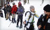 Toronto Adventures Inc. - Toronto: $30 for Introduction to Snowshoeing Lesson and Guided Humber Valley Tour from Toronto Adventures ($60 Value)