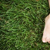 Up to 68% Off Lawn-Aeration Services