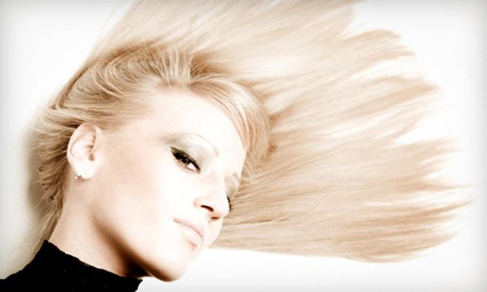 Zena Salon - Lexington: Haircut, Style, and Partial Highlights or Coppola Hair-Smoothing Keratin Treatment at Zena Salon in Lexington (Up to 58% Off)