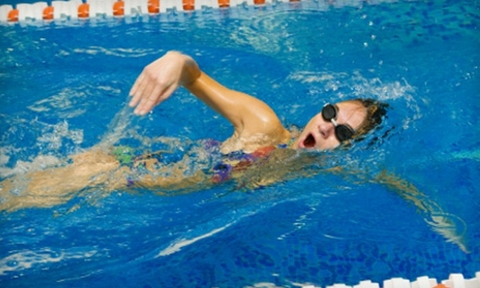 Jaws Swim Shop - Knoxville: $15 for $30 Worth of Swimming Gear at Jaws Swim Shop