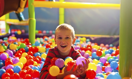 Kids Play Centre Entry: 1 $5, 2 $10 or 4 Kids $19, or a Party $99 at Kidz Paradise Up to $190 Value