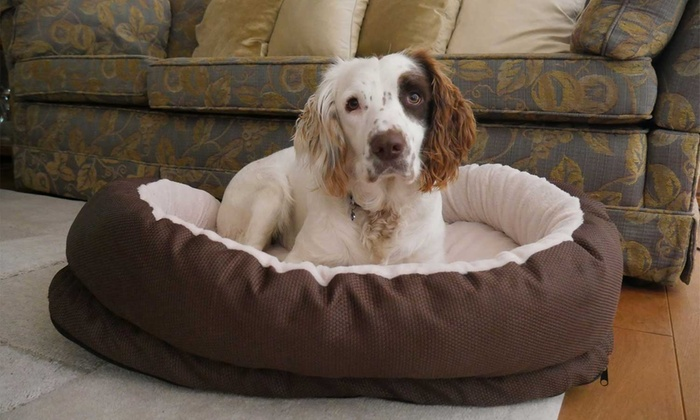 Groupon Goods Global GmbH: Medium or Large Pet Support Bed