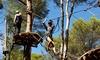 Accrobranche en famille dans l'Ecopark Adventures Montéclin