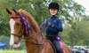 Up to 50% Off Horseback Riding Lessons at Paragon Stables