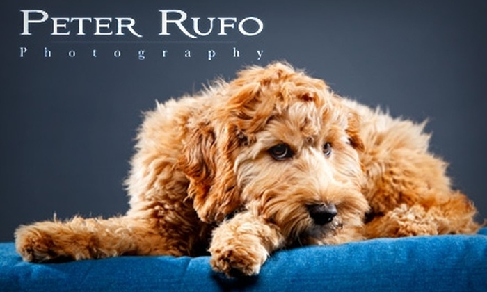 "Peter Rufo Photography - South Side: $40 for a 30-Minute Pet Photography Session Plus an 8""x10"" and a 5""x7"" Print from Peter Rufo Photography ($150 Value)"