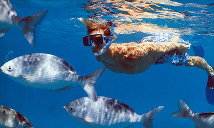 South Florida Charters - Boca Raton: Snorkeling Excursion for Two or Four from South Florida Charters in Boca Raton (Up to 55% Off)