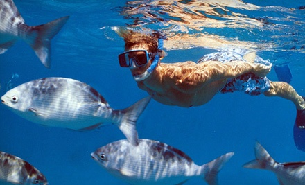 Public 1-Hour Snorkeling Excursion for Two (a $110 value) - South Florida Charters in Boca Raton