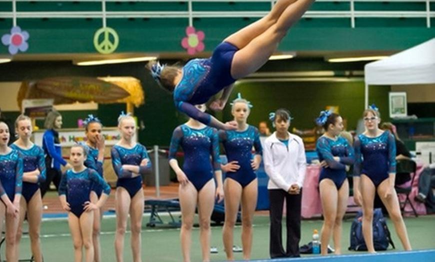 Gym America Gymnastics In Ann Arbor Michigan Groupon