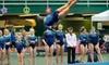 Gym America Gymnastics - Carpenter: Kids' Summer-Camp Session at Gym America Gymnastics. Choose from Three Varieties of Camp.