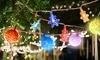 Christmas Festoon String Lights