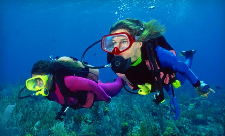 Scuba Lessons, Inc.: Discovery Pool Lesson - Scuba Lessons, Inc. in Avon Park