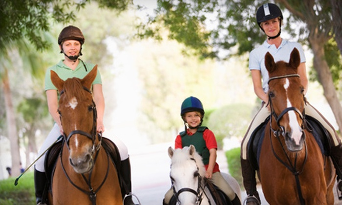 MTS Hunters LLC - Tyrone: Two or Six Private Horseback-Riding Lessons at MTS Hunters LLC in Tyrone