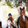 Up to 55% Off Horseback-Riding Lessons in Tyrone