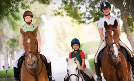 2 Private Horseback-Riding Lessons (a $100 value) - MTS Hunters LLC in Tyrone