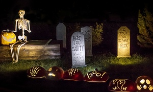 Pumpkin Nights – Up to 32% Off Art Festival at Pumpkin Nights, plus 6.0% Cash Back from Ebates.