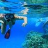 Escursione con snorkeling, Ustica