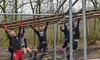 Obstacle Induction: Child £8, Adult £11.50