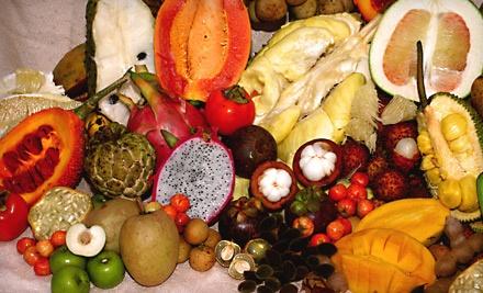 Fruit and Spice Park - Fruit and Spice Park in Homestead
