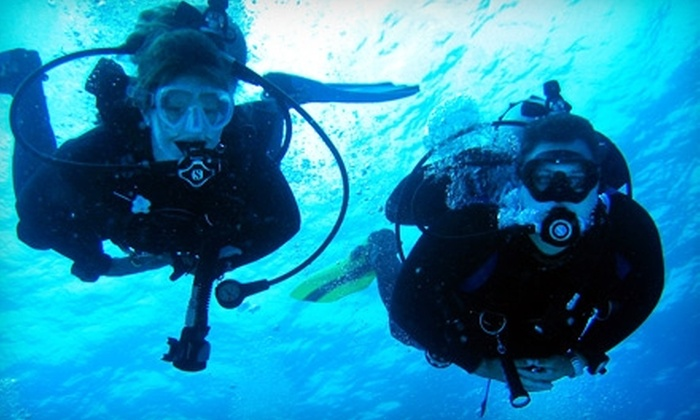 Dive Connections - Rio: $40 for a Scuba-Diving Experience at Dive Connections in Charlottesville ($80 Value)