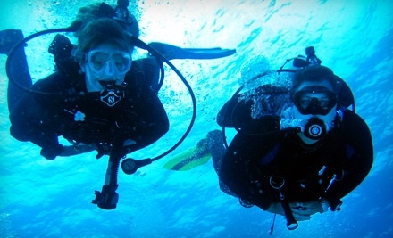 Dive Connections: Individual Scuba Experience - Dive Connections in Charlottesville
