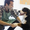 Up to 94% Off Pet Sitting and Grooming Online Courses