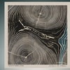 Hot New Release: Needtobreathe's Rivers in the Wasteland on CD