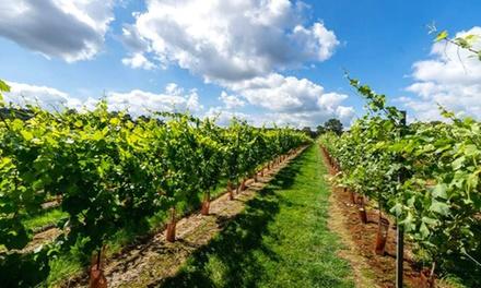 Kingscote Estate & Vineyard