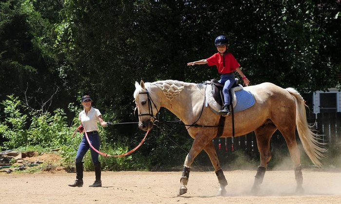 Little Burgundy Farm - Rose Hill: One- or Three-Month Horse Club Membership to Little Burgundy Farm (Up to 47% Off)