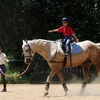 Up to 47% Off Horse Club Membership to Little Burgundy Farm