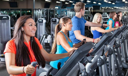 1-, 3-, or 12-Month Gym Membership  with In-Body Scan and Personal-Training Session at Fitness 19 (Up to 92% Off)