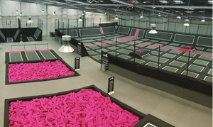 Freedog: One- or Two-Hour Trampoline Park Access for Up to Four at Freedog (Up to 40% Off)