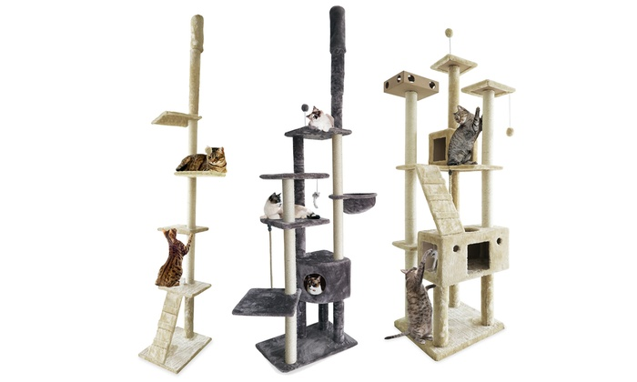 Cat Furniture Floor To Ceiling Playground And Ladder Trees