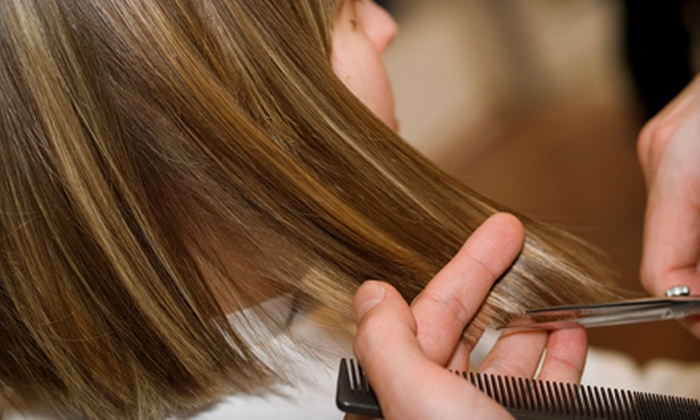 Luxe Salon - Pleasant View Golf Course: Haircut or Haircut and Partial Highlights at Luxe Salon in Middleton