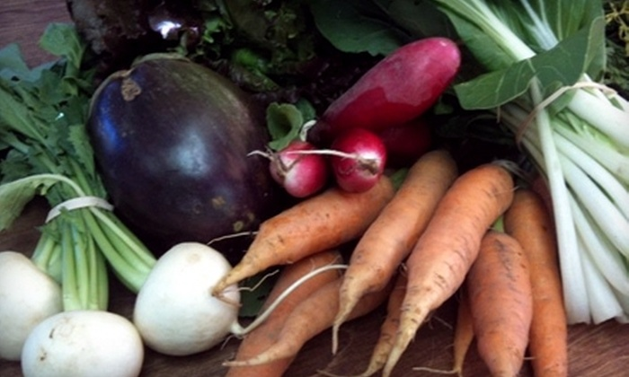 Homegrown Food - Springfield: $10 for $20 Worth of Groceries at Homegrown Food