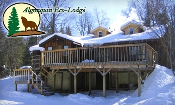 Algonquin Wilderness Eco-Lodge - Dysart: $270 for a Two-Night Stay Plus Luggage Transfer for Two People at the Algonquin Wilderness Eco-Lodge in Bancroft ($542.80 Value)