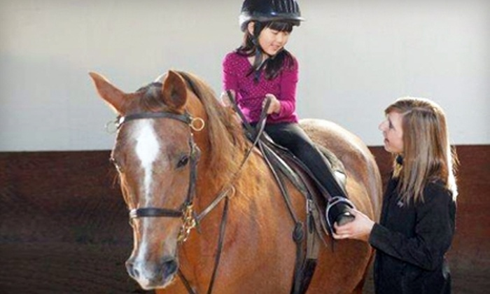 Select Show Horses - Sheridan: $40 for Two One-Hour Horseback-Riding Lessons at Select Show Horses in Sheridan ($80 Value)