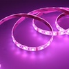 """Xtreme Multi-Color 80"""" LED Light Strip with Remote (1-, 2-, or 4-Pack)"""