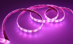"Xtreme Multi-Color 80"" LED Light Strip with Remote (1-, 2-, or 4-Pack)"
