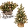 Glittery Pine Holiday Decorations