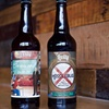 Up to 53% Off Brewery Experience at Levity Brewing Company