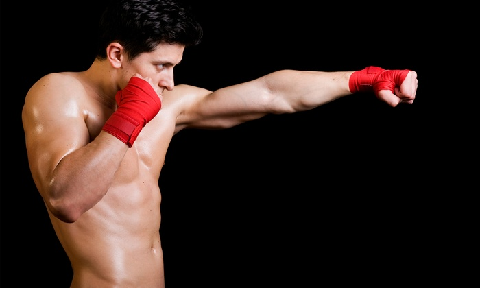 Abnormal Aggression Mixed Martial Arts - Linglestown: Two Weeks of Gym Membership at Abnormal Aggression Mixed Martial Arts (65% Off)
